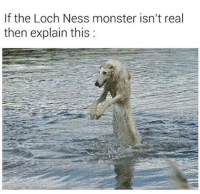 Checkmate Atheists: If the Loch Ness monster isn't real  then explain this Checkmate Atheists