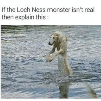 Loch Ness Monster, Memes, and Monster: If the Loch Ness monster isn't real  then explain this: 😂😂lol - - - - - - - - - 420 memesdaily Relatable dank MarchMadness HoodJokes Hilarious Comedy HoodHumor ZeroChill Jokes Funny KanyeWest KimKardashian litasf KylieJenner JustinBieber Squad Crazy Omg ovo Kardashians Epic bieber Weed TagSomeone hiphop trump rap drake