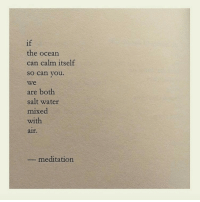 Meditation: if  the ocean  can calm itself  so can you.  we  are both  salt water  mixed  with  aif.  meditation