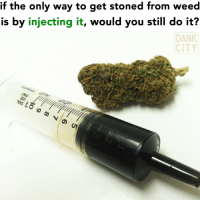 Dank, Weed, and Marijuana: if the only way to get stoned from weed  is by injecting it, would you still do it?  DANK  CITY 🤔 @chronicjournal