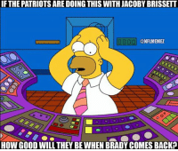 Nfl, Patriotic, and Good: IF THE PATRIOTS ARE DOING THIS WITH JACOBY BRISSETT  D000 CONFLMEMEZ  HOW GOOD WILL THEY BEWHEN BRADY COMES BACK? NFL coaches right now