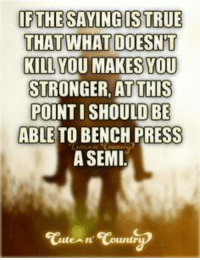 Memes, Bench Pressed, and 🤖: IF THE SAYING ISTRUE  THAT WHAT DOESNT  KILL  YOU MAKES YOU  STRONGER, AT THIS  POINTI SHOULD BE  ABLE TO BENCH PRESS  A SEMI  An' Countr BamaPrincess