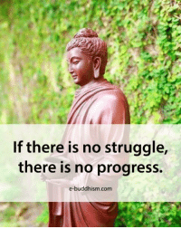 Memes, Struggle, and Buddhism: If there is no struggle,  there is no progress.  e-buddhism com