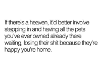 Heaven, Shit, and Pets: If there's a heaven, it'd better involve  stepping in and having all the pets  you've ever owned already there  waiting, losing their shit because they're  happy you're home