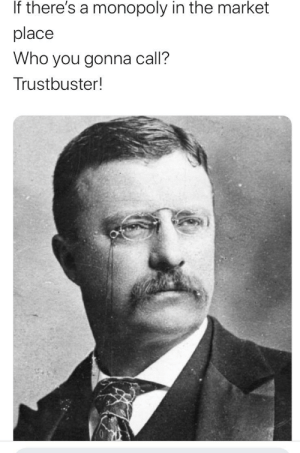 Monopoly, History, and Idea: If there's a monopoly in the market  place  Who you gonna call?  Trustbuster! Yes I did get the idea from Histeria