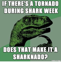 Currently on a watch: IF THERE'S A TORNADO  DURING SHARK WEEK  DOES THAT MAKE ITA  SHARKNADO?  made on imgur Currently on a watch
