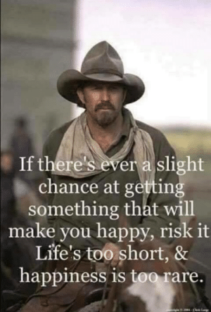 Memes, Happy, and Happiness: If there's ever a slight  chance at getting  something that will  make you happy, risk it  Life's too short, &  happiness is too rare. Saddle up and get after it