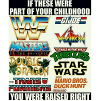 IF THESE WERE  PART OF YOUR CHILDHOOD  TEENAGE MUTANTNIN VA  THE UNIVERSE  OF STAR  DRAGON  WARS  EHRATOEG MARIO BROS.  SUPER  THE  DUCK HUNT  (Niniendo  YOU WERE RAISED RIGHT childhood