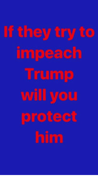 Memes, Trump, and Proud: If they try to  impeach  Trump  will you  protect  him Will you stand behind our President? Proud Southern Deplorables