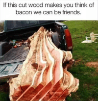 Friends, Funny, and Pictures: If this cut wood makes you think of  bacon we can be friends. 33 Funny Pictures Of The Day #funny #picture