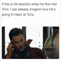 Memes, 🤖, and  Tony: if this is his reaction when he first met  Thor, l can already imagine how he's  going to react at Tony. (Reilly Johnson)