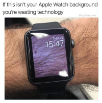 @highfiveexpert is one of the best meme makers hands down: If this isn't your Apple Watch background  you're wasting technology  @highfiveexpert  THU 21  15:47 @highfiveexpert is one of the best meme makers hands down