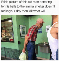 Dank, Old Man, and Animal: If this picture of this old man donating  tennis balls to the animal shelter doesn't  make your day then idk what will  OW If this doesn't brighten your day up...
