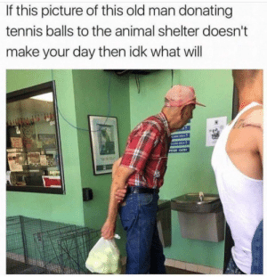 Cats, Memes, and Old Man: If this picture of this old man donating  tennis balls to the animal shelter doesn't  make your day then idk what will  TION CATS positive-memes:  Wholesome giving back