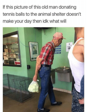 Mah hart.: If this picture of this old man donating  tennis balls to the animal shelter doesn't  make your day then idk what will Mah hart.