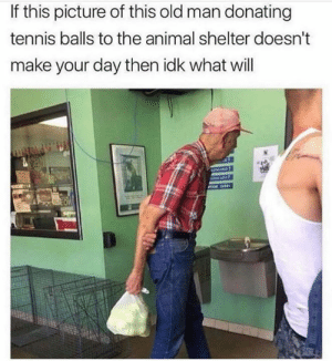 Memes, Old Man, and Animal: If this picture of this old man donating  tennis balls to the animal shelter doesn't  make your day then idk what will