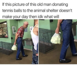 Old Man, Animal, and Animal Shelter: If this picture of this old man donating  tennis balls to the animal shelter doesn't  make your day then idk what will Careful, he's a hero.