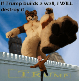 God, Photoshop, and Tumblr: If Trump builds a wall, I WILL  destroy it  RR LMP leterriblechild:  joannus:thank god I can't believe the furries are going to save world in 2k17.   @unfaggy I never knew u had photoshop skills