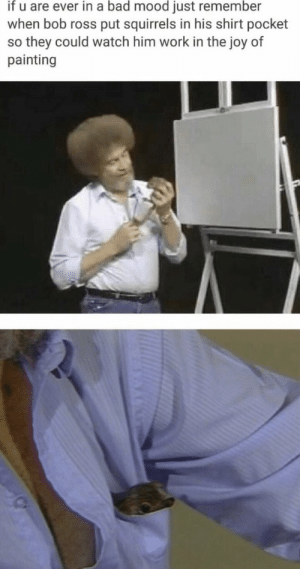 https://t.co/4CtEnAq3ss: if u are ever in a bad mood just remember  when bob ross put squirrels in his shirt pocket  so they could watch him work in the joy of  painting https://t.co/4CtEnAq3ss
