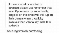 Hello, Girl Memes, and Super: if u are scared or worried or  stressed please just remember that  even if you mess up super badly,  doggies on the street will still tug on  their owners when u walk by  because they wanna say hello to u  so badly  This is legitimately comforting. https://t.co/GCdkhSdulK