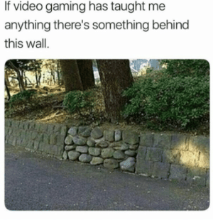 Hopefully its a lot of money!: If video gaming has taught me  anything there's something behind  this wall.  iit Hopefully its a lot of money!