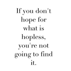 What Is, Hope, and Net: If vou don't  hope for  what is  hopless,  you're not  going to find  it. https://iglovequotes.net/