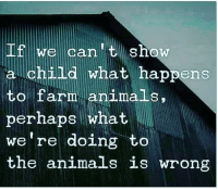 Animals, Memes, and Respect: If we can t show  a child what happens  to farm animals,  perhaps what  we're doing to  the animals is wrong GO VEGAN 👊 🌱🌱🌱 🌱🌱 🌱 . SAVE ANIMALS↔FOLLOW VEGANS @ugly_by_nature @ayveegan @_respect_for_animals_ _______________________________ vegan veganuniverse veganlifestyle govegan meatfreeathlete veganmuscle porkbelly pork crueltyfree vegangirl rawvegan ham vegansofinstagram animalrights vegansofig animalwelfare plantbased vegangirl rawtill4 bacon veganmom dogsofinstgram veganism vegansofig piglets pigsofinstagram plantbasedathlete veganbodybuilding animalcruelty veganinspo