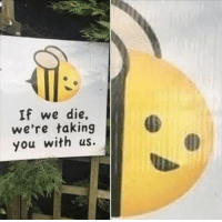 Dank Memes, Bees, and You: If we die,  we're taking  you with us. Save the bees