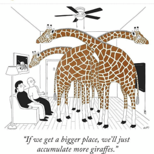 "Dank, Memes, and Target: ""If we get a bigger place, we'll just  accumulate more giraffes.  05 me irl by daviddukenukem MORE MEMES"