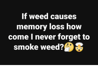 Memes, Weed, and Never: If weed causes  memory loss how  come I never forget to  smoke weed?