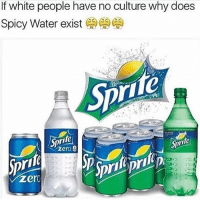 Bruh this true asf @hoodlives: If white people have no culture why does  Spicy Water exist  CAG CA  Sprite  Sprfe  zero e  v Zero Bruh this true asf @hoodlives