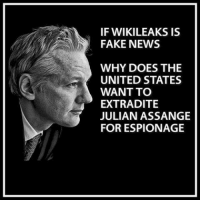 fake: IF WIKILEAKS IS  FAKE NEWS  WHY DOES THE  UNITED STATES  WANT TO  EXTRADITE  JULIAN ASSANGE  FOR ESPIONAGE