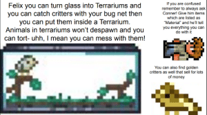 "You can't capture NPC's which is dissapointing: If you are confused  remember to always ask  Conner! Give him items  Felix you can turn glass into Terrariums and  you can catch critters with your bug net then  you can put them inside a Terrarium.  Animals in terrariums won't despawn and you  can tort- uhh, I mean you can mess with them!  which are listed as  ""Material"" and he'll tell  you everything you can  do with it  You can also find golden  critters as well that sell for lots  of money You can't capture NPC's which is dissapointing"