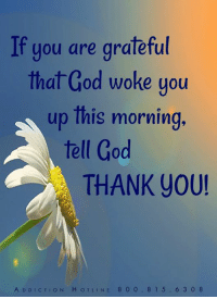 woke: If you are grateful  that God woke you  up lhis morning  tell God  THANK You!  A DDICTION HOTLINE 8 0 0.815.6 3 0 8