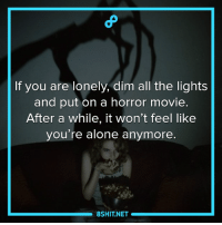 It works!: If you are lonely, dim all the lights  and put on a horror movie.  After a while, it won't feel like  you're alone anymore.  8SHIT NET It works!