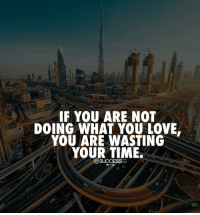 Memes, 🤖, and Love You: IF YOU ARE NOT  DOING WHAT YOU LOVE.  YOU ARE WASTING  YOUR TIME.  @SUCCESSES Just be honest with yourself! Successes