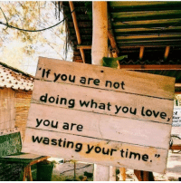 Love, Time, and You: If you are not  doing what you love  you are  wasting your time