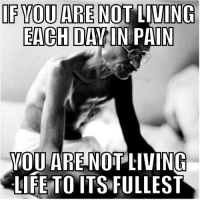If you are not living each day in pain...: IF YOU ARE NOT LIVING  EACH DAY IN PAIN  YOU ARE NOT LIVING  LIFE TO ITS FULLEST If you are not living each day in pain...