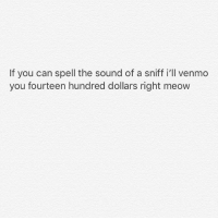Memes, Venmo, and 🤖: If you can spell the sound of a sniff i'll venmo  you fourteen hundred dollars right meow Go for it 😀💯