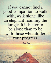 Being Alone, Memes, and Buddha: If you cannot find a  good companion to walk  with, walk alone, like  an elephant roaming the  jungle. It is better to  be alone than to be  with those who hinder  your progress.  Buddha  POSITIVE If you cannot find good companion to walk with, walk alone, like an elephant roaming the jungle. It is better to be alone than to be with those who hinder your progress. - Buddha positiveenergyplus