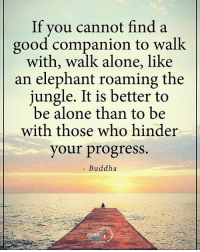 Being Alone, Memes, and Buddha: If you cannot find a  good companion to walk  with, walk alone, like  an elephant roaming the  jungle. It is better to  be alone than to be  with those who hinder  your progress.  Buddha  POSITIVE Sometimes you give up on some people. Not because you don't care, but because they don't. powerofpositivity