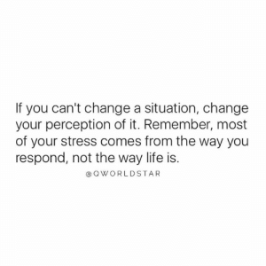 Life, Worldstar, and Change: If you can't change a situation, change  your perception of it. Remember, most  of your stress comes from the way you  respond, not the way life is.  @Q WORLDSTAR Change How You See Things.... Remain Positive Through Hardship.... 🙏 #LifeLessons [via QWorldstar]