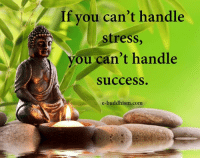 Memes, Buddhism, and Success: If you can't handle  stress,  you can't handle  success  e-buddhism.com