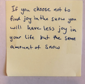 I see this every time I open my door to go outside.: IF you choose not to  find joy inthe Suow you  will have leSs joy in  your Cife but the Sane  amount of Snos I see this every time I open my door to go outside.
