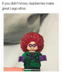Lego, Memes, and Afros: If you didn't know raspberries make  great Lego afros FYI
