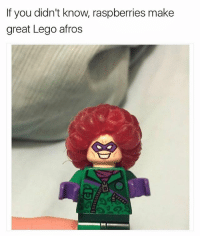 Funny, Lego, and Meme: If you didn't know. raspberries make  great Lego afros (@_kevinboner )
