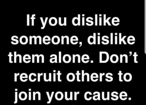 dislike: If you dislike  someone, dislike  them alone. Don't  recruit others to  join your cause.