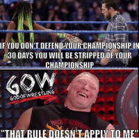 "Memes, Wrestling, and World Wrestling Entertainment: IF YOU DON'T DEFENDAOUR CHAMPIONSHIP IN  530 DAYS YOU WILL BE STRIPPED OF YOUR  CHAMPIONSHIP  GODOF WRESTLING  ""THAT RULE DOESN TAPPW TO ME"" Unless you're Brock Lesnar then no prowrestling professionalwrestling brocklesnar wwe wweraw wwenxt wweuniverse wweuniversalchampionship wwewrestling wweworldheavyweightchampion wwenetwork wwesuperstars wwefunny wwebacklash wrestler wrestler wrestling wrestlers wrestlingmemes ajstyles jindermahal kevinowens randyorton worldwrestlingfederation worldwrestlingentertainment"