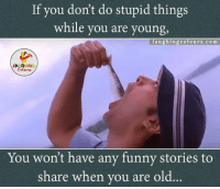 Funny, Old, and Stupidity: If you don't do stupid things  while you are young  l a u g hin g colours .com  LA GHING  You won't have any funny stories to  share when you are old Do stupid things... :)