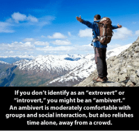 """moderator: If you don't identify  as an """"extrovert"""" or  """"introvert,"""" you might be an """"ambivert.""""  An ambivert is moderately comfortable with  groups and social interaction, but also relishes  time alone, away from a crowd."""